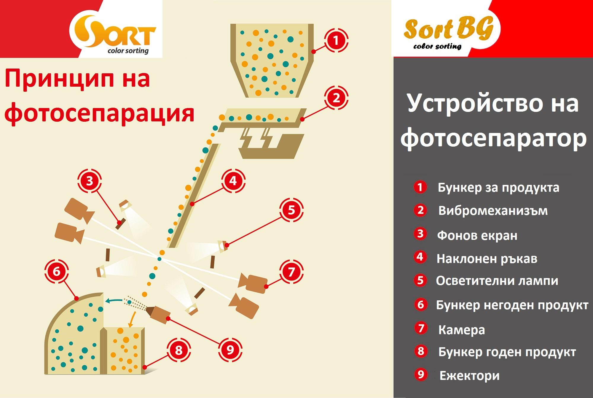 csort, sort, bg, принцип, работа, фото, сепаратор
